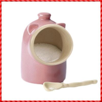 salt pig-065