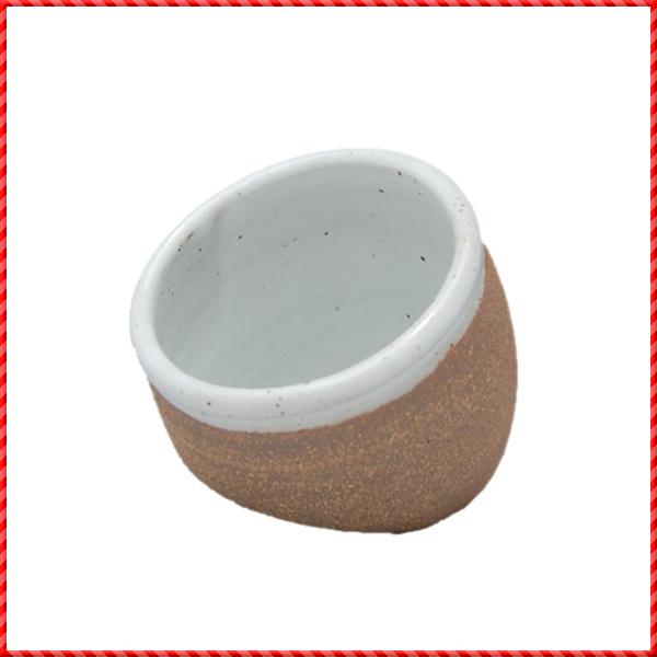 salt pig-074