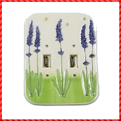 switch cover plate-031