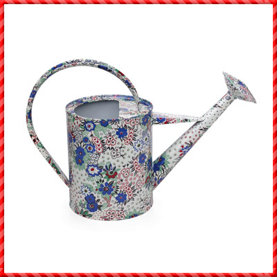 watering can-019
