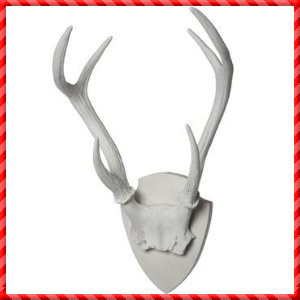 Deer Antler-020