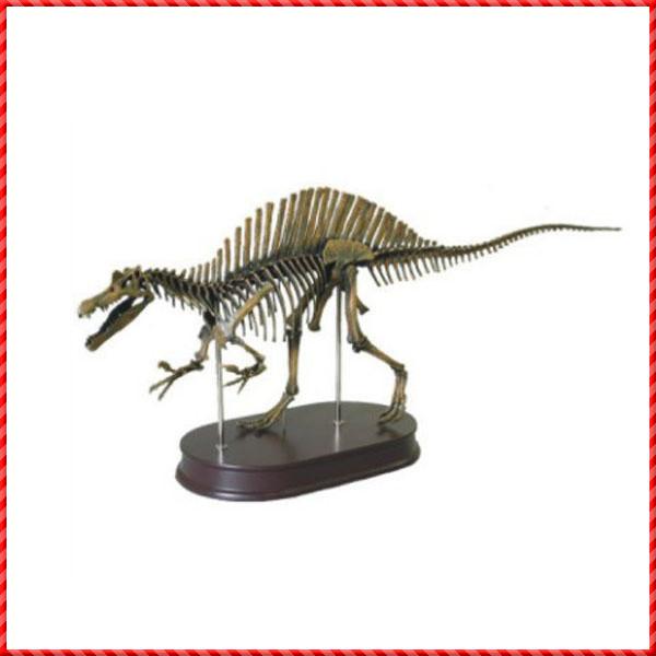 dinosaur skeleton-006