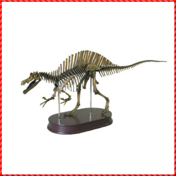 dinosaur skeleton-007
