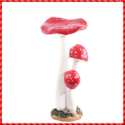 garden mushroom-022